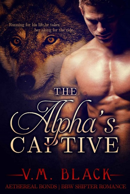 The Alpha's Captive Book 1 - Taken