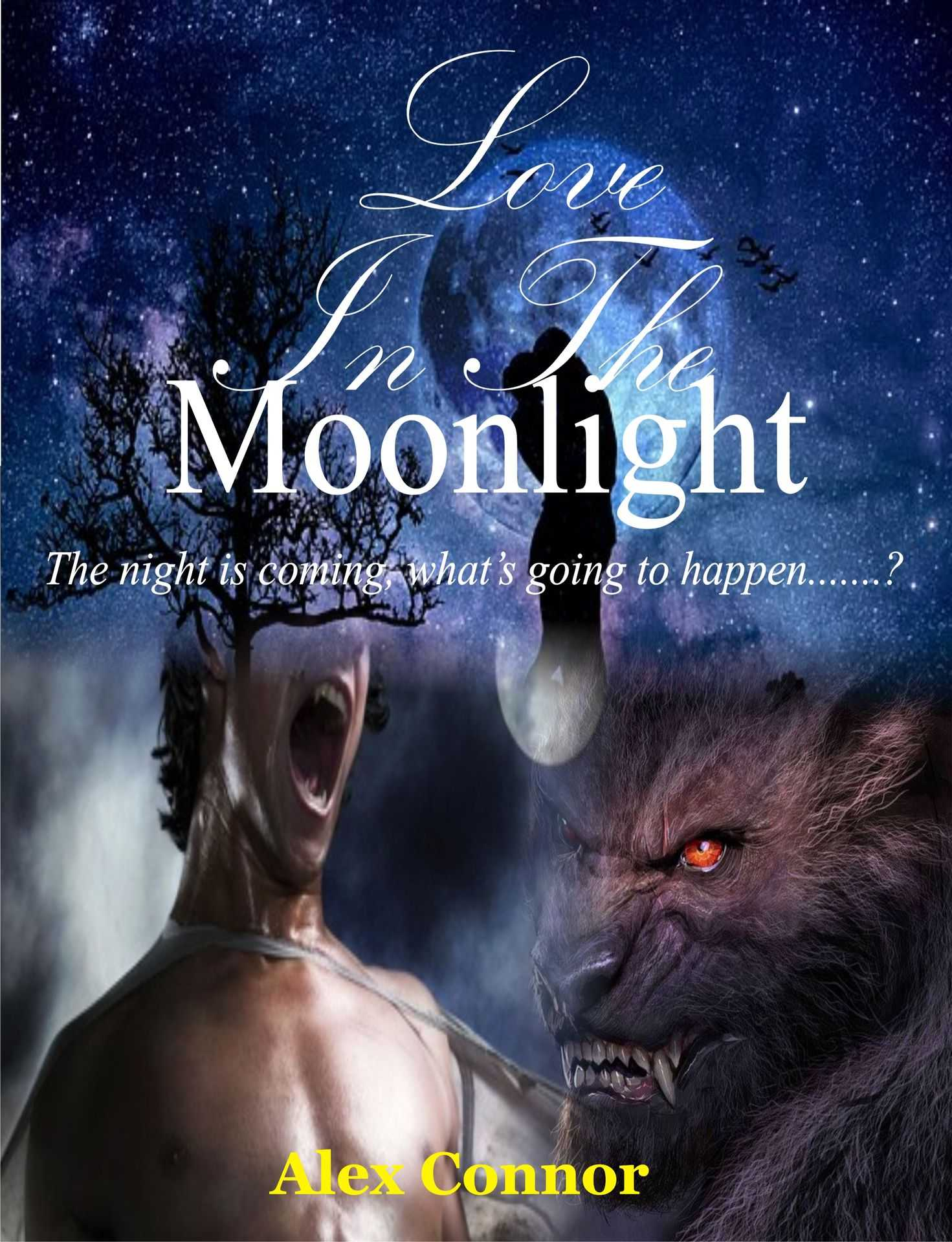 Moonlight Love (Series 1)